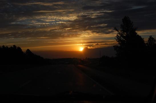 2010  Black Hills  South Dakota - photo by me