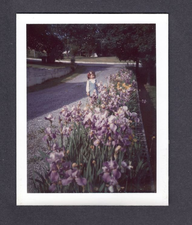 That's me when I was little next to Mom's Irises when we lived in Greeneville.  Photo is from about 1970.