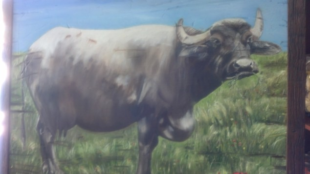 A portrait of the Water Buffalo that hung in the small family store.  Tribute to their source of income.