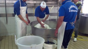 Mater Pepe and his apprentices working to smooth the curd.