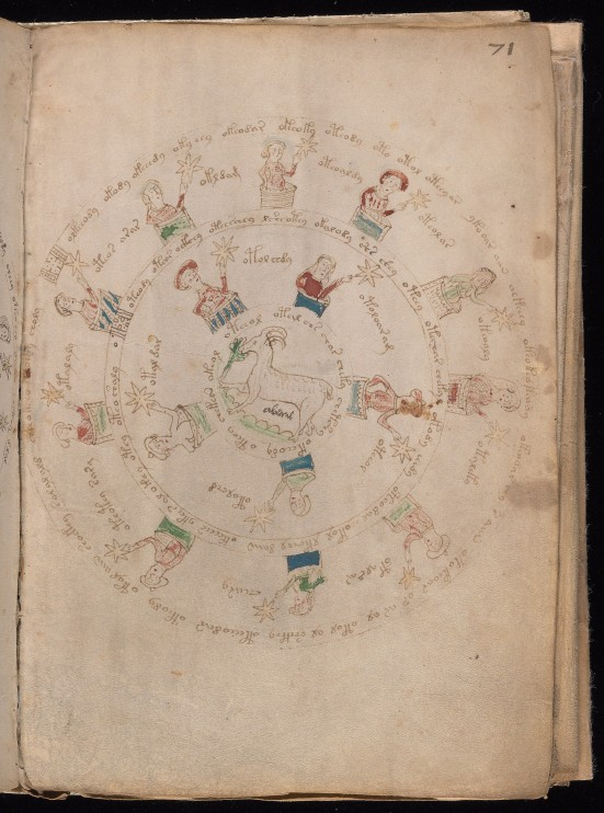 Voynich Manuscript.jpg